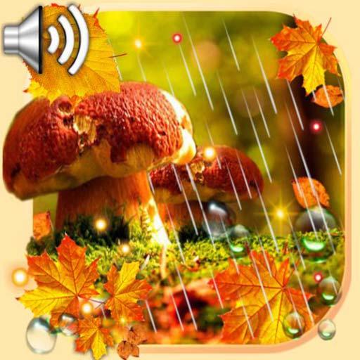 Autumn Rain livewallpaper