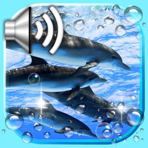 Dolphin Voice