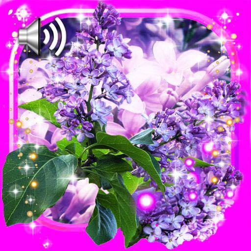 Lilac Tender LWP