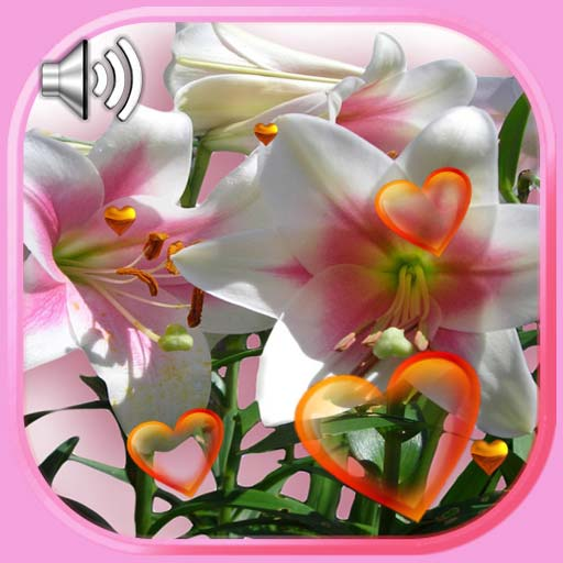 Lilies Love Live Wallpaper