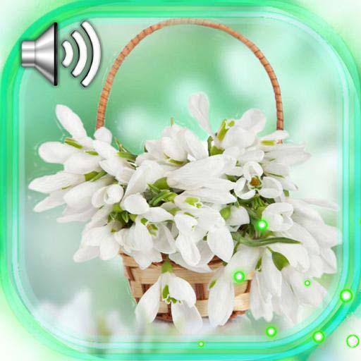 Snowdrops Spring Bouquet